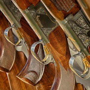 Medžiokliniai ginklai